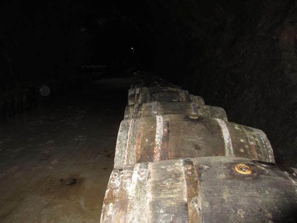 宁波山洞bwin网页登录拉菲仿生态bwin网页登录